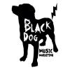 BlackDogMusicMarketing2015.jpg