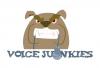 VoiceJunkies.jpg