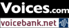 voicescomvoicebanknet2017.jpg