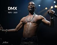 dmx-mix-group.jpg